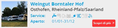 Weingut Borntaler Hof Osthofen Germania