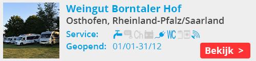 Weingut Borntaler Hof osthofen